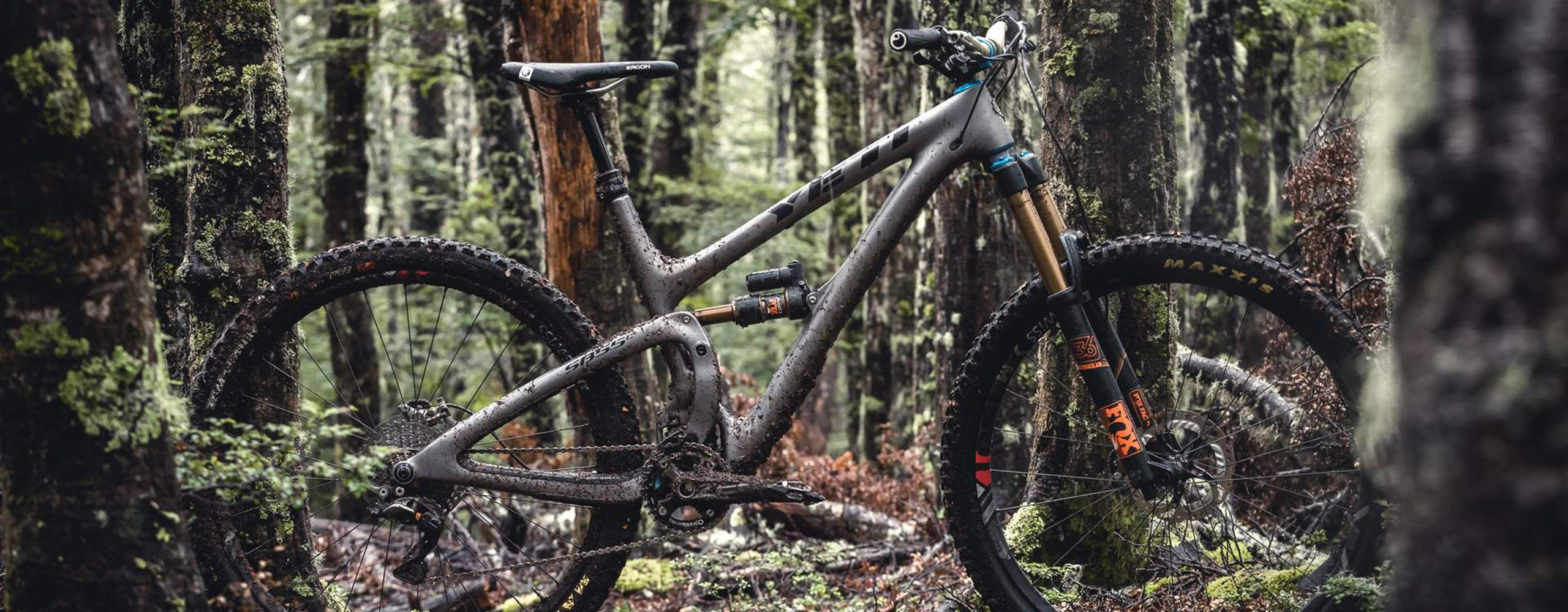 Yeti Bike - Expert Cycles